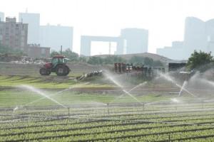 Quand l'agriculture francilienne perd du terrain. Chaque année, près de 2.000 hectares de champs sont grignotés par l'urbanisation.