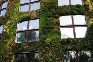 Faut-il végétaliser Paris ?, grand paris développement, débat pour/contre