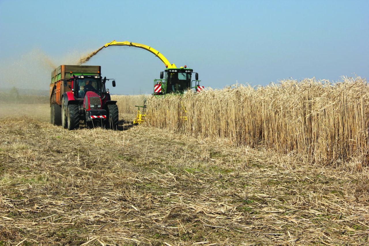 P17-18-LE-RURAL-Agriculture-P321-1280x853.jpg